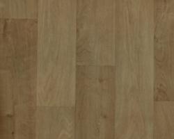 Линолеум Camargue/acorn/533